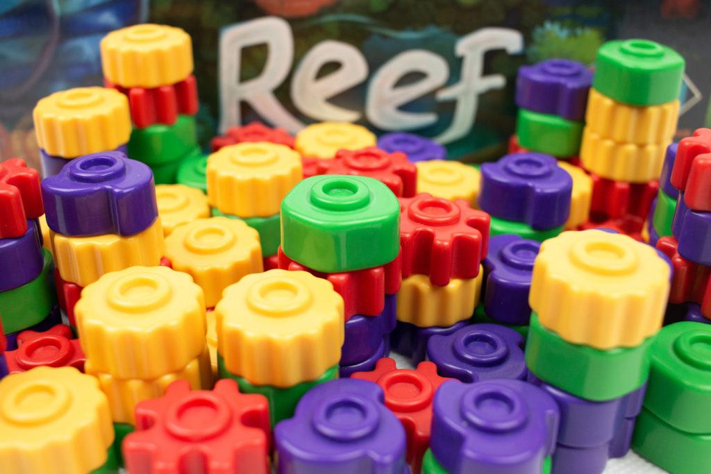 Koralowce w Reef